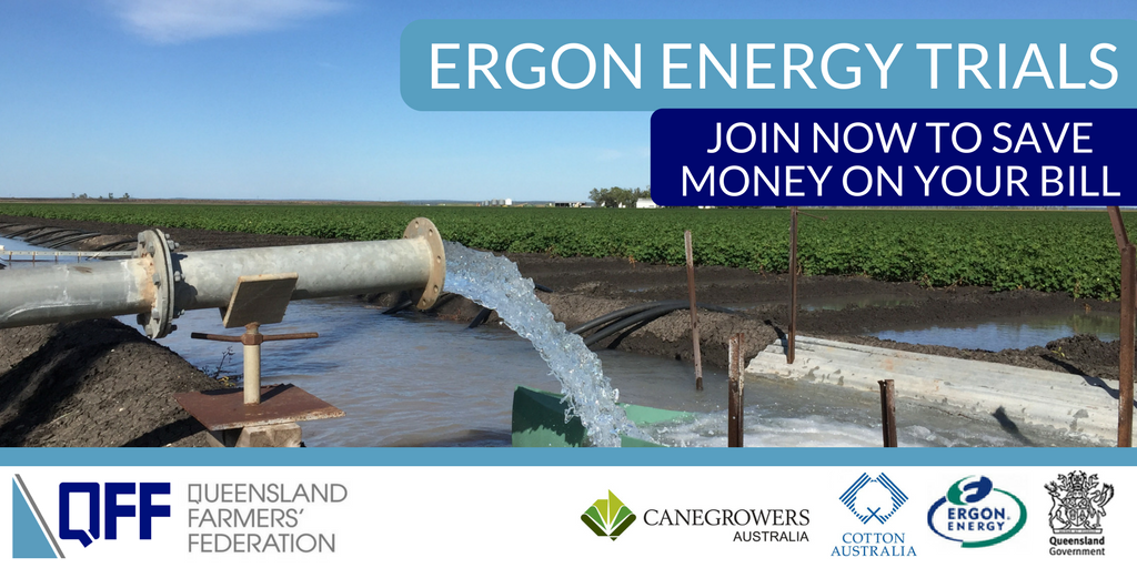 Ergon Trials